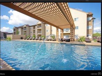 EasyRoommate US - $575 Sublet Madera Apartments , Northwest Side - $575 pm