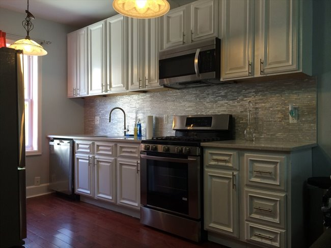 room for rent in columbia heights columbia heights basement