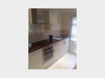 EasyRoommate UK - Lovely One Bedroom Flat on Wordsworth Avenue in Roath, Cardiff, Plasnewydd - £600 pcm