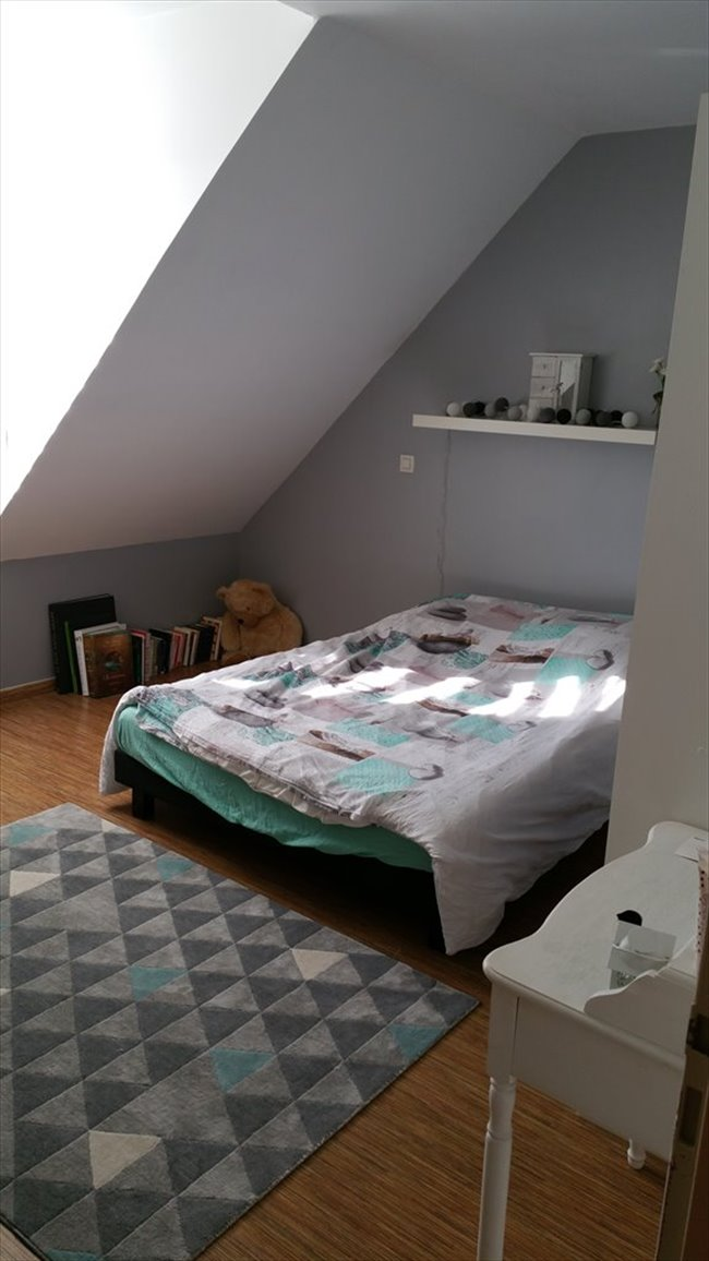 Colocation boves chambre a louer 15 kms amiens for 1 chambre a louer