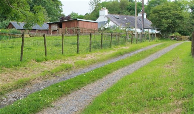 Room to rent in Dumfries - Room rental in stunning country cottage  - Image 2