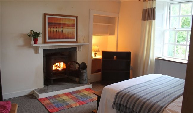 Room to rent in Dumfries - Room rental in stunning country cottage  - Image 3