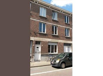 EasyKot EK - Studio's en Kamers in Wiltrijk tussen 3 campussen, Antwerpen-Anvers - € 320 p.m.