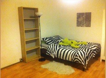 EasyKot EK - Nog 2 compacte studio's in studentenbuurt beschikbaar., Antwerpen-Anvers - € 350 p.m.