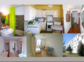 Appartager FR - APPARTEMENT MEUBLÉE EN COLOCATION X 4 chambres, Saint-Martin-d'Hères - 345 € /Mois