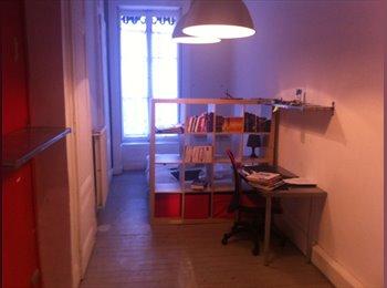 Appartager FR - Loue chambre meublée ~ 20m² dans appartement 110m² tout équipé, Lyon - 500 € /Mois