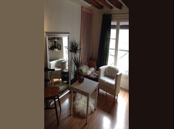 Appartager FR - Studio chaleureux au coeur de Paris, 3ème Arrondissement - 650 € /Mois