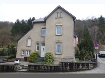 Appartager LU - Luxembourg: Près du Kirchberg - 5 chambres à louer, Luxembourg - 700 € / Mois