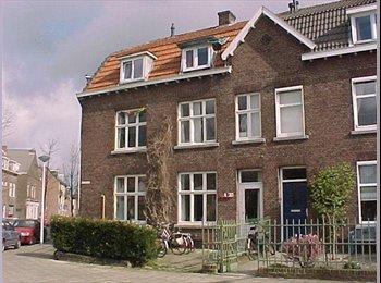 EasyKamer NL - Room offer in an international co-housing project, Maastricht - € 330 p.m.