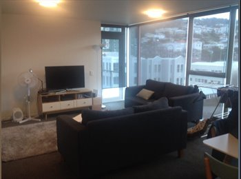NZ - ROOM AVAILABLE, Wellington - $350 pw