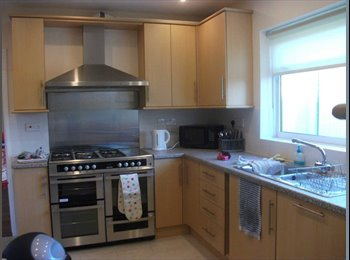 EasyRoommate UK - Beautiful room to rent, Exeter - £485 pcm