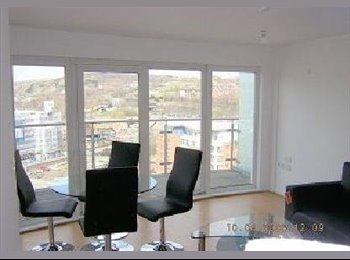 EasyRoommate UK - Fully furnished Double Bedroom available at Sheffield,, Sheffield - £395 pcm