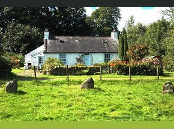 EasyRoommate UK - Room rental in stunning country cottage , Dumfries - £400 pcm