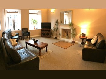 EasyRoommate UK - 2 rooms in town centre, considerate housemates , Dumfries - £300 pcm