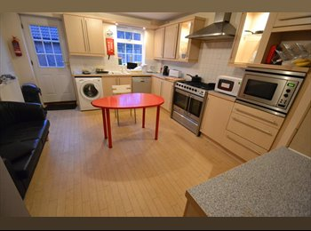 EasyRoommate UK - FURNISHED DOUBLE ROOM, Norwich - £360 pcm