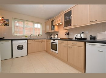 EasyRoommate UK - Student Rooms - Newly refurbished , Norwich - £475 pcm