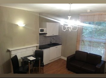 EasyRoommate UK - A Charming Double Studio To Rent, Hammersmith - £607 pcm