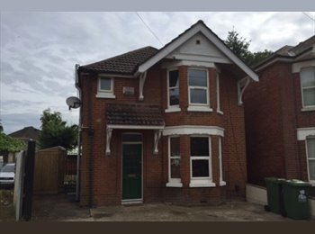 EasyRoommate UK - Nice room in a nice central house, The Polygon - £368 pcm