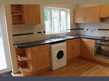 EasyRoommate UK - 2 Rooms Available in Student House, Norwich - £400 pcm