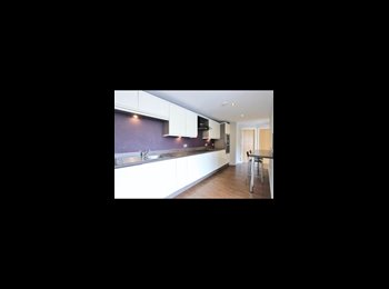 EasyRoommate UK - 2 Bedroom Flat, Sheffield - £420 pcm