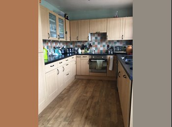 EasyRoommate UK - Single and double room to rent, St George - £350 pcm