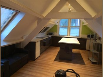 EasyRoommate UK - 8 bedroom student flat with 5 males and 2 females., Sheffield - £322 pcm