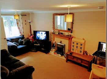 EasyRoommate UK - Double Room available for rent , Norwich - £350 pcm