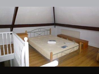 EasyRoommate UK - 1 Large Attic Room House Share , Spital Tongues - £420 pcm