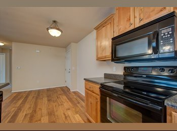 EasyRoommate US - Spacious Room with Awesome Roommates, United States - $285 pm
