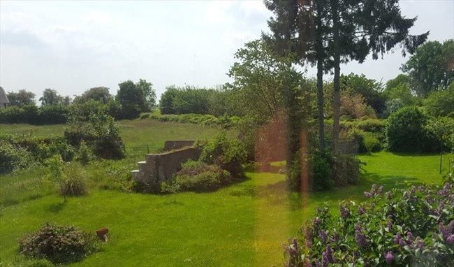 Colocation à Les Bons Villers - Colocation dans grande maison de +/- 250m2 à Frasnes-Lez-Gosselies | Appartager - Image 8