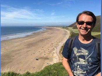 EasyRoommate UK - Dave - 54 - Swansea