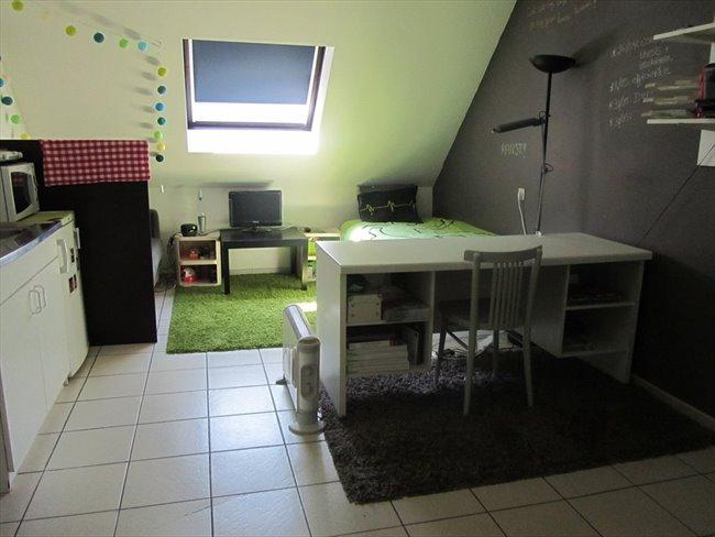 Koten te huur in Hasselt - Studentenhuis CUM LAUDE Diepenbeek | EasyKot - Image 1