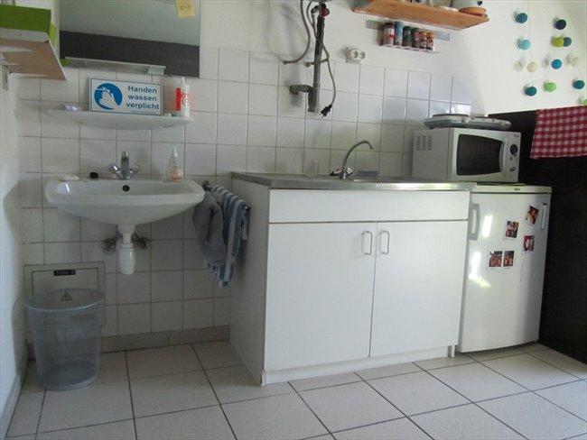 Koten te huur in Hasselt - Studentenhuis CUM LAUDE Diepenbeek | EasyKot - Image 2