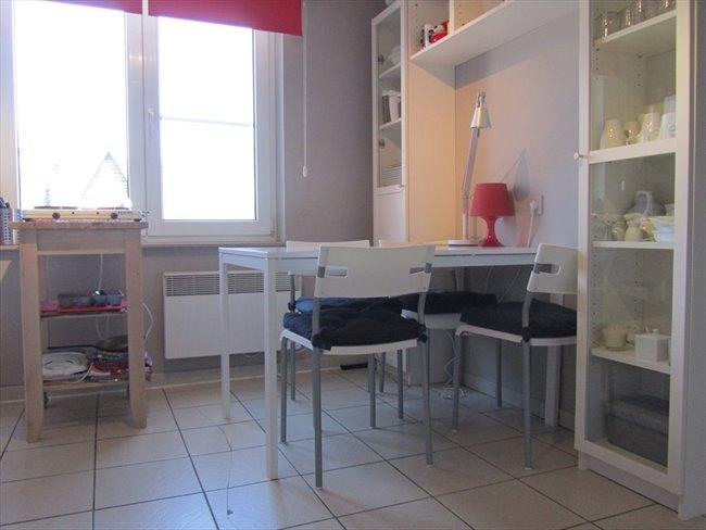 Koten te huur in Hasselt - Studentenhuis CUM LAUDE Diepenbeek | EasyKot - Image 5