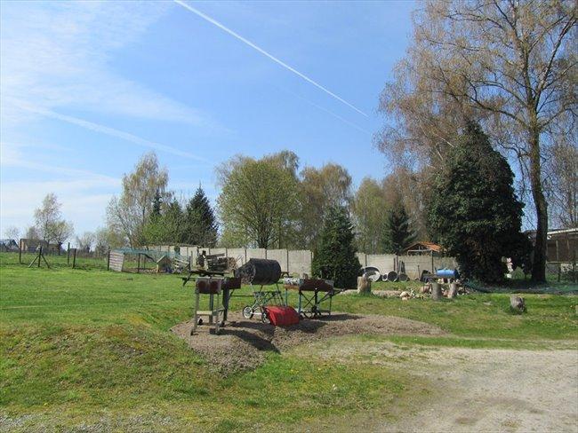 Koten te huur in Hasselt - Studentenhuis CUM LAUDE Diepenbeek | EasyKot - Image 7