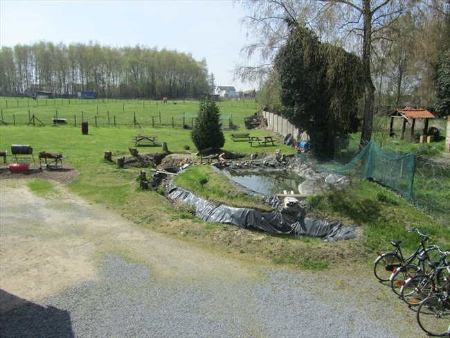 Koten te huur in Hasselt - Studentenhuis CUM LAUDE Diepenbeek | EasyKot - Image 8