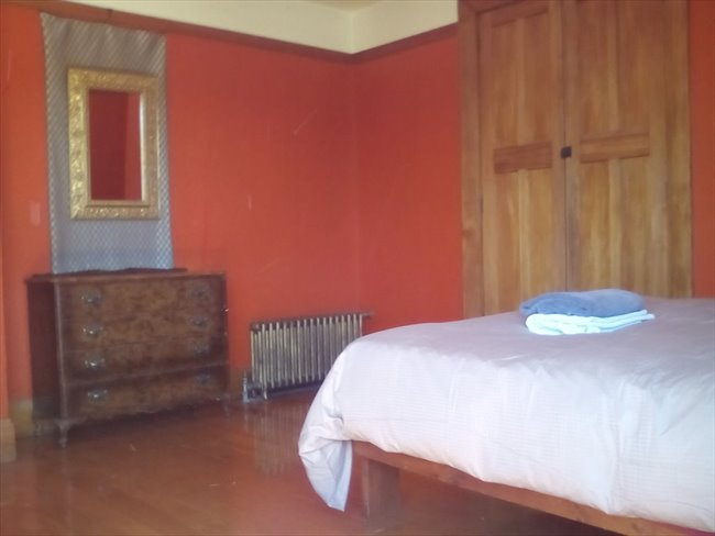 Room to rent in Christchurch - Neat room in big house - Image 2
