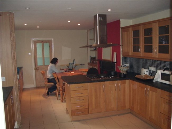 Room to rent in Mannamead -  Large double room in young professionals house. - Image 1