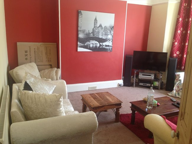 Room to rent in Mannamead -  Large double room in young professionals house. - Image 3