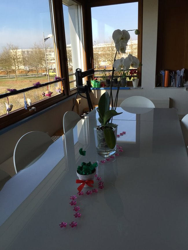 Colocation à Rue d'Avalon, Luxembourg - Appartement in Kirchberg near EIB/KPMG/Auchan with WIFI after 1. Feb. 2018 | Appartager - Image 1