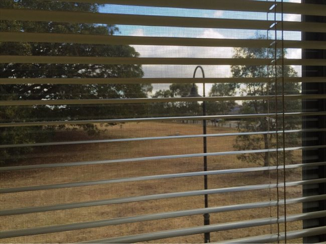 Room to rent in Figtree Walk, Lyndhurst - $200 includes gas water & electricity - Image 1