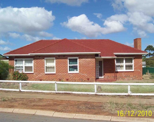Room to rent in Gould Road, Elizabeth Park - Comfortable and Stable Budget Accomodation - Image 2