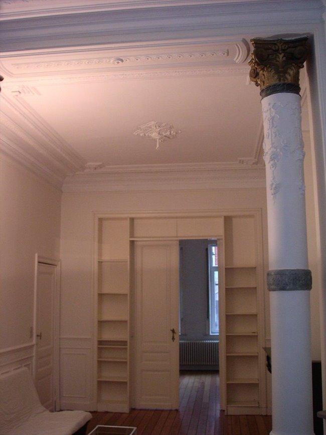 Colocation à Rue des Confédérés, Bruxelles - appartement meublé avec terrasse et jardin à louer | Appartager - Image 6