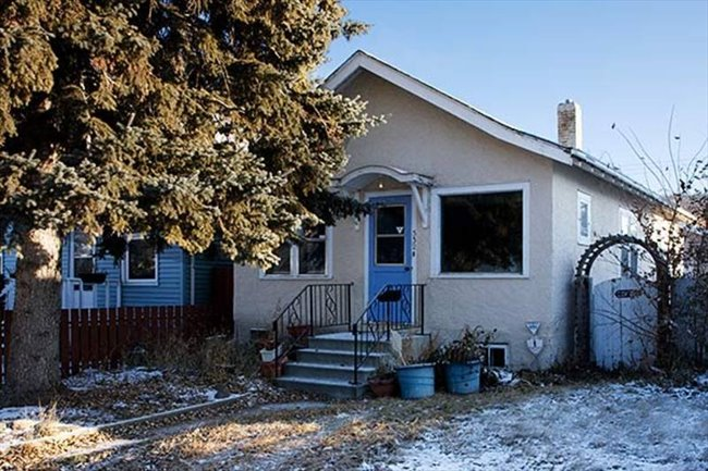 Room for rent in Ave I North, Saskatoon Area - Shared Accomodation BRIGHT BEAUTIFUL HOUSE!   - Image 1