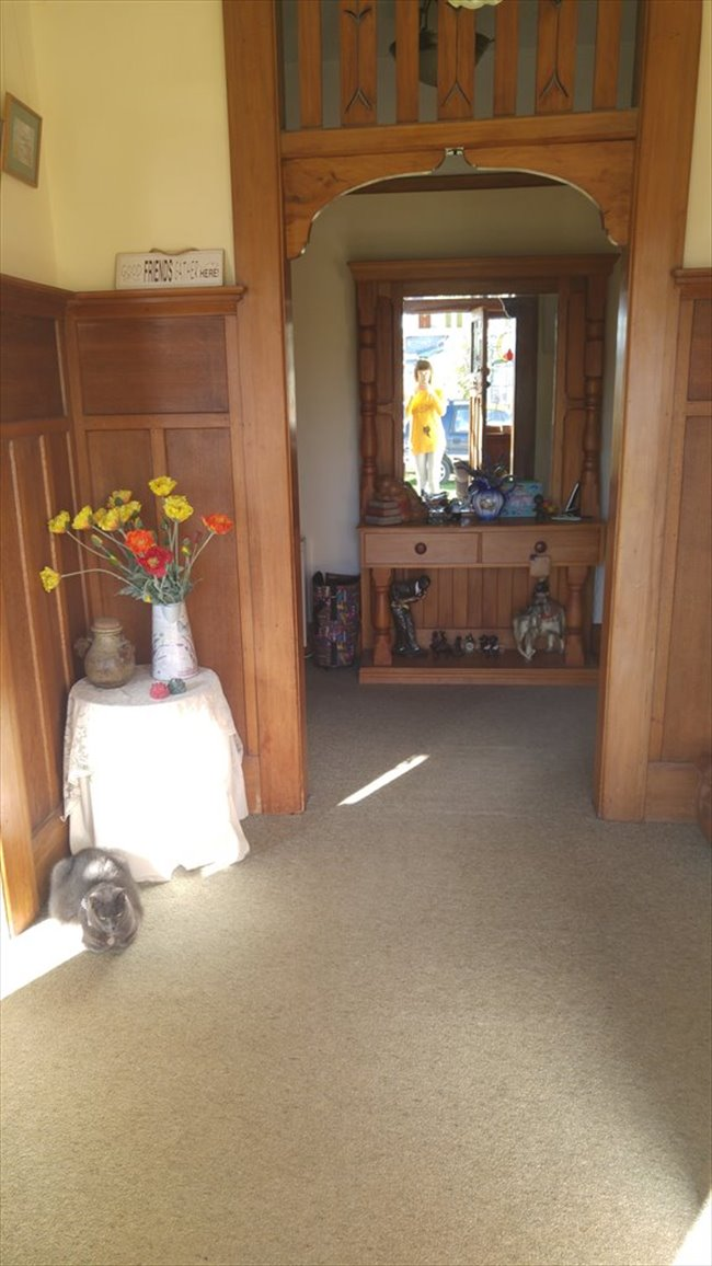 Room to rent in Wychbury Street, Christchurch - Couple?  New to ChCh.? - Image 7