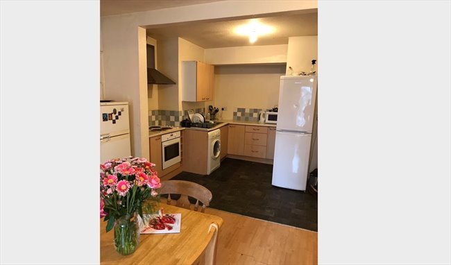 Room to rent in Highfield Road, Birmingham - SINGLE ROOM TO LET IN HALL GREEN - Image 1