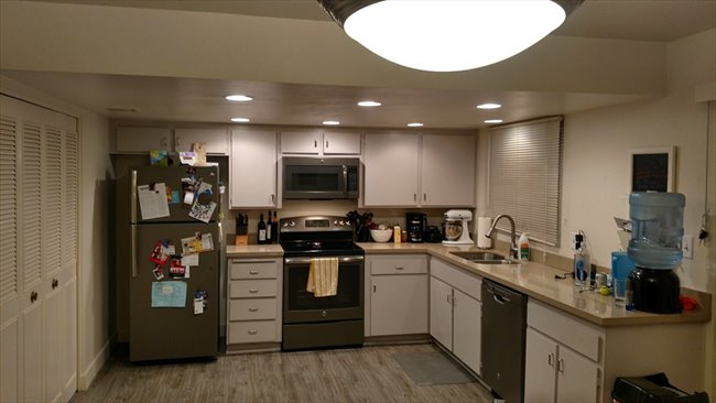 1 bedroom condos for rent in tempe az. room for rent in mill ave, tempe, arizona - 1 bedroom condos tempe az