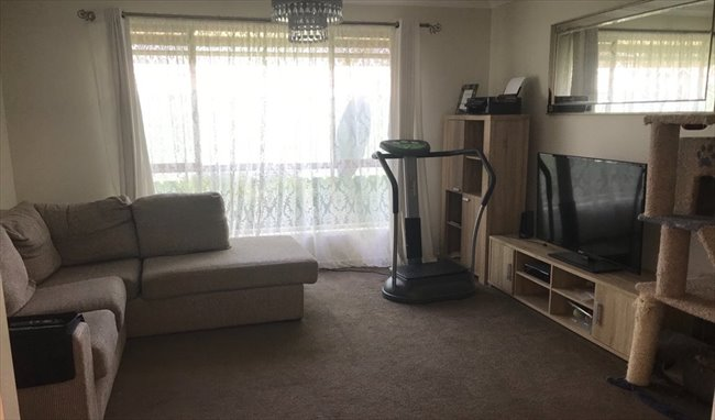 Room to rent in Turner Road, Elizabeth Park - Housemate Wanted! - Image 4