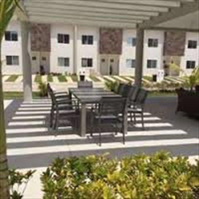 Cuarto en renta en Calle 135, Cancún - Fraccionamiento Nuevo con Alberca, Seguridad y Comodidad   CompartoDepa - Image 4