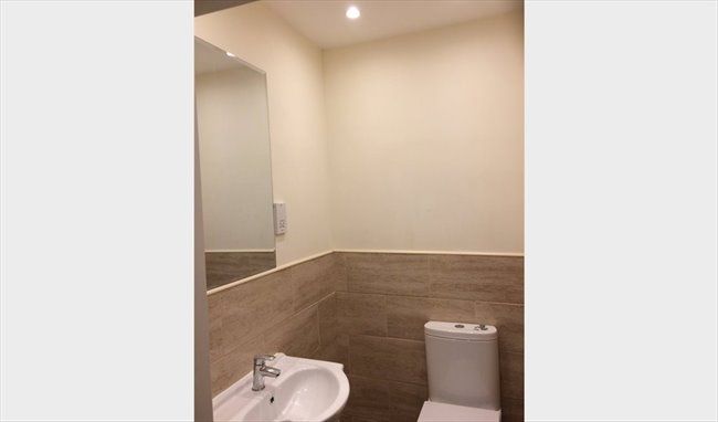 Room to rent in Newton Street, Bristol - Tastefully refurbished house - Image 7